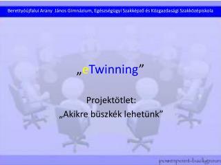 """"""" e Twinning """""""