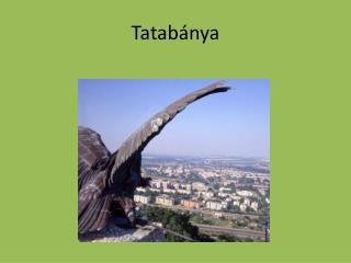 Tatab�nya