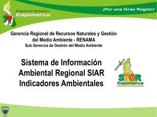 Gerencia  Regional de Recursos Naturales y Gestión del Medio  Ambiente - RENAMA