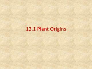 12.1 Plant Origins
