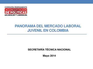 PANORAMA DEL MERCADO LABORAL  JUVENIL EN COLOMBIA