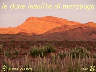 le dune insolite di merzouga