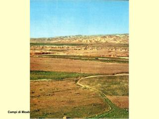 Campi di Moab