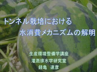 トンネル栽培における