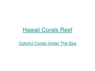 Hawaii Corals Reef