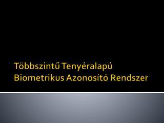Többszintű Tenyéralapú  Biometrikus  Azonosító Rendszer