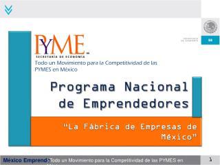 Programa Nacional de Emprendedores