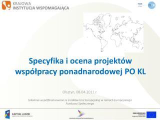 Specyfika i ocena projektów współpracy ponadnarodowej PO KL