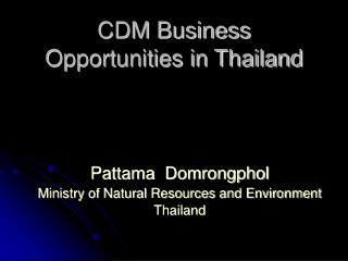 CDM Business Opportunities in Thailand