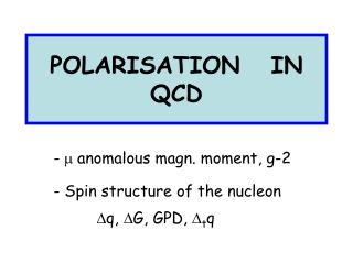 POLARISATION   IN   QCD