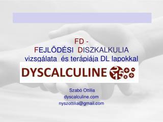 FD - F EJLŐDÉSI   D ISZKALKULIA vizsgálata  és terápiája DL lapokkal