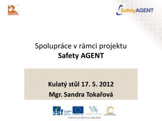 Spolupr�ce v r�mci projektu  Safety AGENT