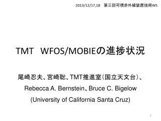 TMT WFOS/MOBIE の進捗状況