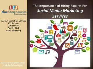 Experts for social media marketing services