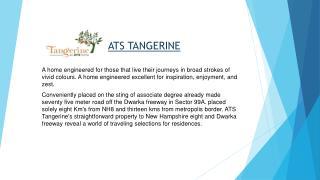 ATS Tangerine