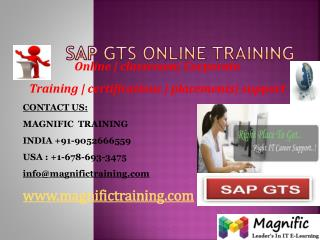 SAP GTS ONLINE TRAINING IN UK