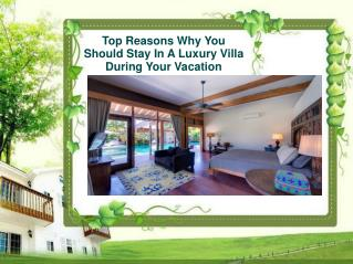 Top Reasons Why You Should Stay In A Luxury Villa During You