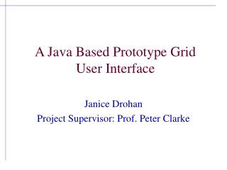 A Java Based Prototype Grid User Interface