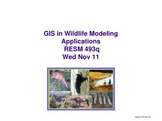 GIS in Wildlife Modeling Applications RESM 493q Wed Nov 11