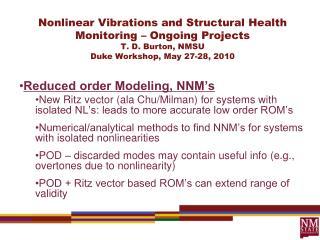 Reduced order Modeling, NNM's