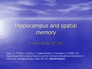 Hippocampus and spatial memory