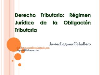 Javier Laguna Caballero jlc@lagunacaballeroabogados jlaguna@ladersam