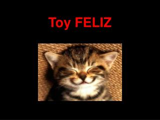Toy FELIZ