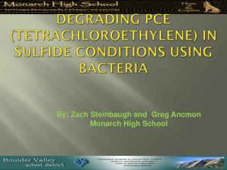 Degrading PCE ( Tetrachloroethylene ) In Sulfide Conditions using Bacteria