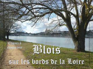 Blois  sur les bords de la Loire