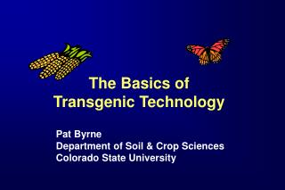 The Basics of Transgenic Technology