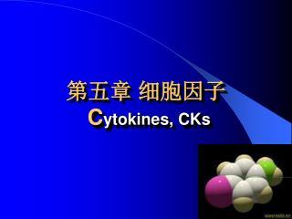 第五章 细胞因子 C ytokines, CKs