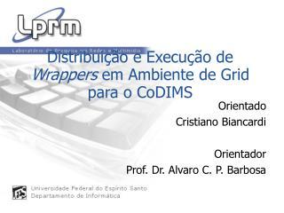 Distribui��o e Execu��o de  Wrappers  em Ambiente de Grid para o CoDIMS