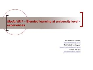 Modul M11  – Blended learning at university level - experiences