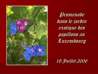 Promenade dans le jardin exotique des papillons au Luxembourg   18.Juillet.2006