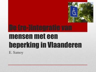 De (re-)integratie van mensen met een beperking in Vlaanderen