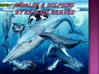 Whales & Dolphins BY EARLINE GRAVES