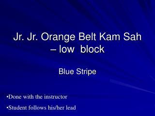 Jr. Jr. Orange Belt Kam Sah – low  block