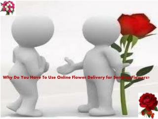 Why Do You Have To Use Online Flower Delivery for Sending Fl
