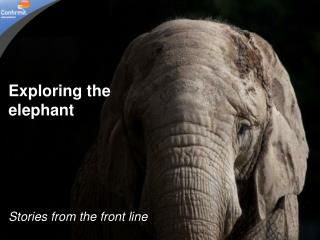 Exploring the elephant Stories from the front line