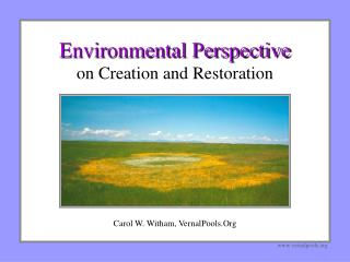 Environmental Perspective on Creation and Restoration