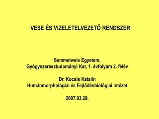 Semmelweis Egyetem,  Gy�gyszer�sztudom�nyi Kar, 1. �vfolyam 2. f�l�v Dr. Kocsis Katalin