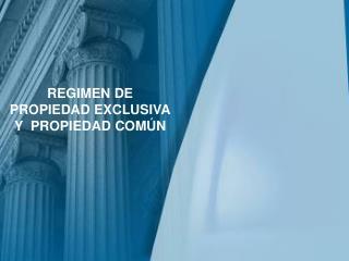 REGIMEN DE PROPIEDAD EXCLUSIVA Y  PROPIEDAD COMÚN