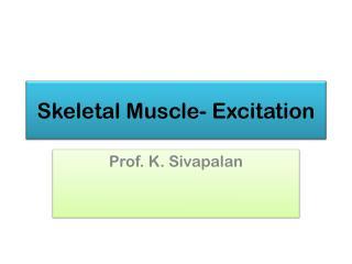 Skeletal Muscle- Excitation