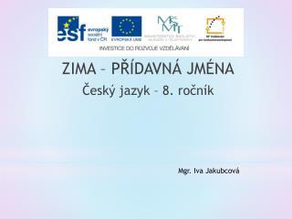 ZIMA – PŘÍDAVNÁ JMÉNA Český jazyk – 8. ročník