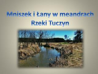 Mniszek i Łany w meandrach Rzeki Tuczyn