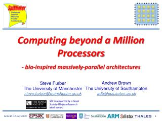 Computing beyond a Million Processors - bio-inspired massively-parallel architectures