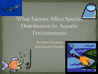 What Factors Affect Species Distribution In  Aquatic Environments