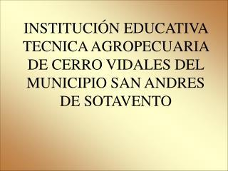 INSTITUCI N EDUCATIVA TECNICA AGROPECUARIA DE CERRO VIDALES DEL MUNICIPIO SAN ANDRES DE SOTAVENTO