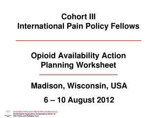 Cohort III International Pain Policy Fellows