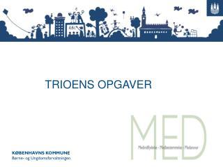 TRIOENS OPGAVER